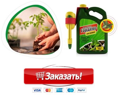 купить средство против сорняков раундап инструкция